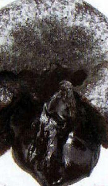 Moelleux au chocolat et rocher praliné